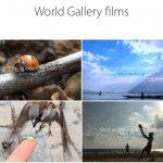 Apple、iPhone 6で撮影した動画を紹介する「World Gallery films」のページを公開
