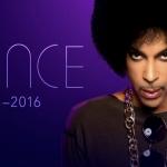 プリンスの楽曲、Apple MusicやGoogle Playで2月12日から提供!?